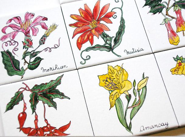 flores-patagonia